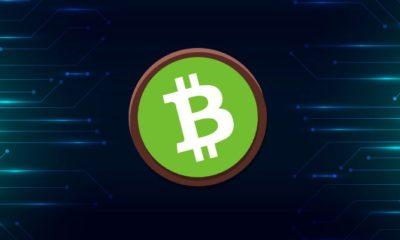 Bitcoin.com CEO'su Roger Ver'in Destek Çekme Kararı!