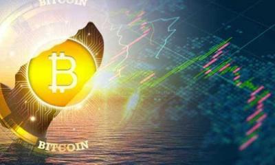 bitcoin balina (whale) nedir