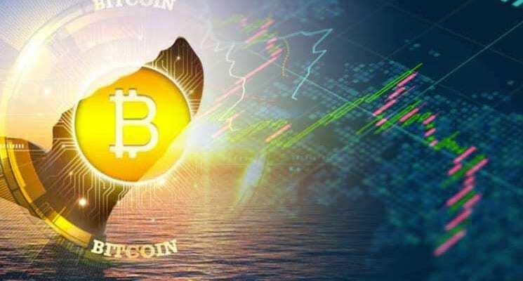 """""""Bitcoin Balina"""" Terimi Nedir? Bitcoin Balinaları Neyi Hedefler?"""