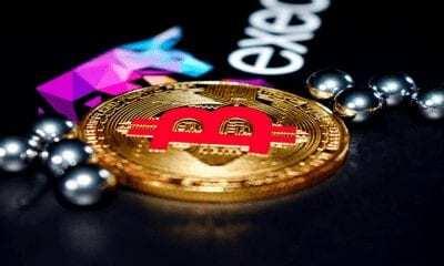 Halvinge 5 Kala Bitcoin Balinaların Sayısında Sert Artış!