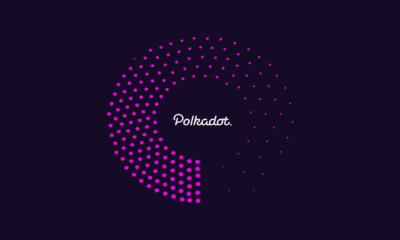 Polkadot Tabanlı Yeni Proje