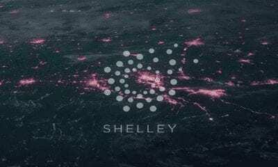 Cardano Shelley İçin Yol Haritasını Yayınladı! 29 Temmuz'da Geliyor