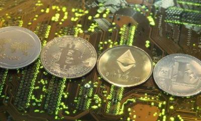 Kurumların Üçte Biri Kripto Yatırımları Yapıyor