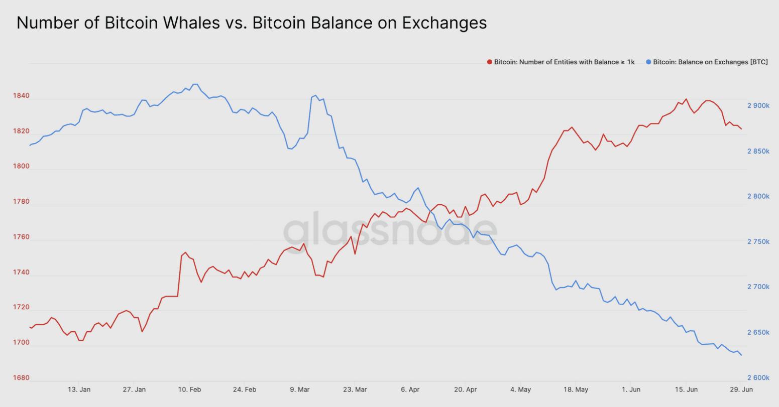 Bitcoin Balinası Borsa Karşılaştırması Grafiği