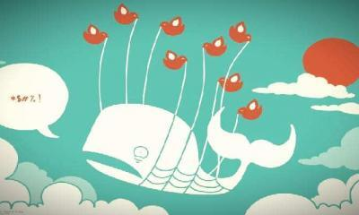 Whale Alert Twitter Önlemlerinden Olumsuz Etkilendi!