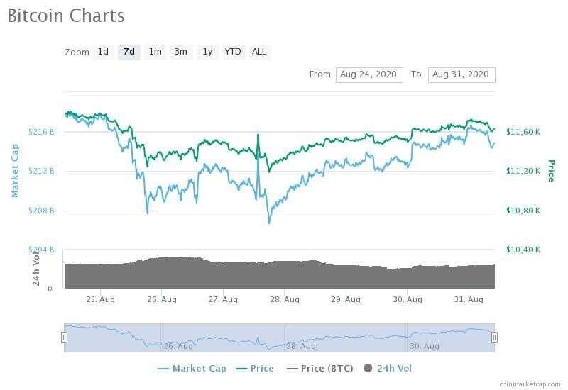 24-31 Ağustos 2020 Bitcoin fiyat, hacim ve piyasa değeri grafikleri