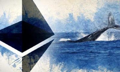 Düşüşe Rağmen Ethereum Balinaları Fazlalaşıyor!