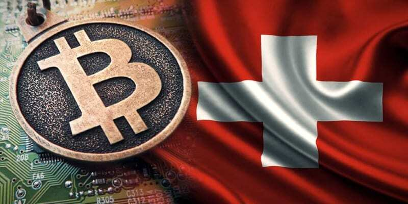 İsviçre muhabbit