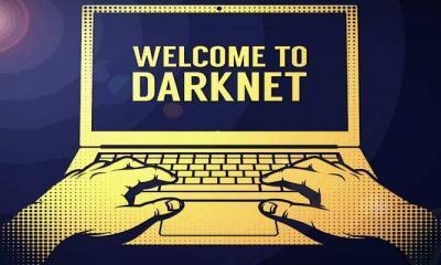 AlphaBay Darknet'in Piyasa Yöneticisi Ceza Aldı!
