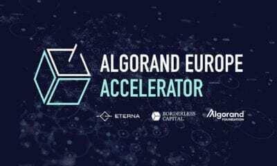 Algorand, Yeni Programında 500.000 Dolar Hibe Edecek!