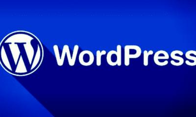 WordPress Yeni Bir Eklenti İle Telif Haklarını Korumayı Hedefliyor