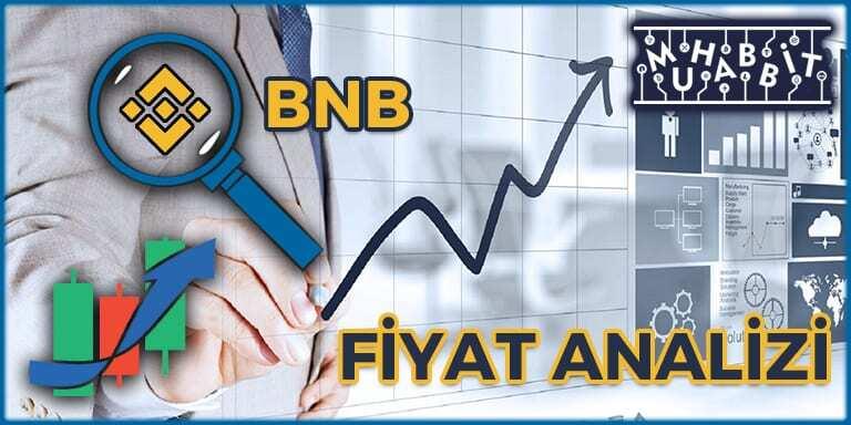 Binance Coin BNB Fiyat Analizi 24.01.2021