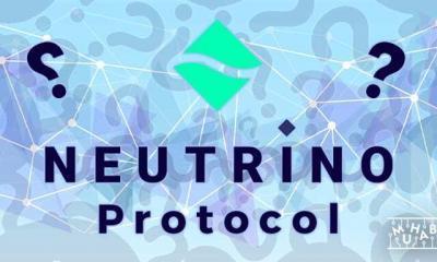Neutrino Protocol Nedir?