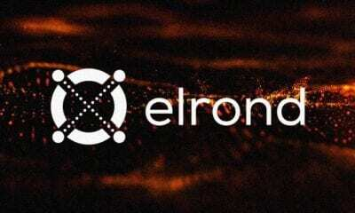 Elrond eToroX'te Listeleniyor!