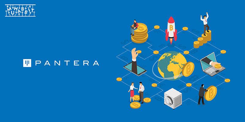 Pantera Capital'in Kurumsal Bitcoin Yatırımcılarına Müjdesi Var!