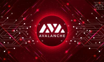 Felixo Tokeni FLX Avalanche Üzerine Taşındı!