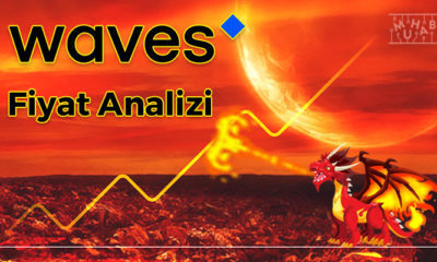 Waves Fiyat Analizi 19.02.2021