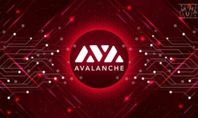 Avalanche, 2021 Yılı Üçüncü ve Dördüncü Çeyrek Yol Haritasını Yayımladı!