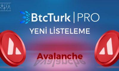 avalanche btcturk pro listeleme muhabbit