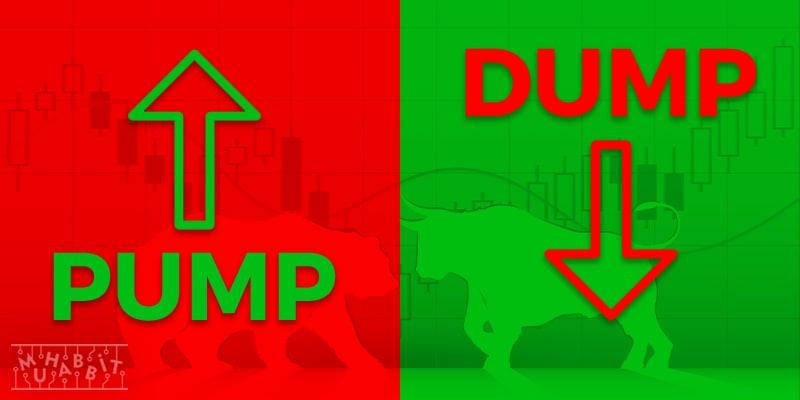 pump ve dump muhabbit