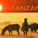 Tanzanya, Kripto Paraların Kabulü İçin Araştırmalara Başlıyor!