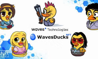 wavesducks