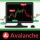 Avalanche AVAX Fiyat Analizi 28.07.2021
