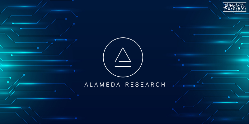 Alameda Research Muhabbit