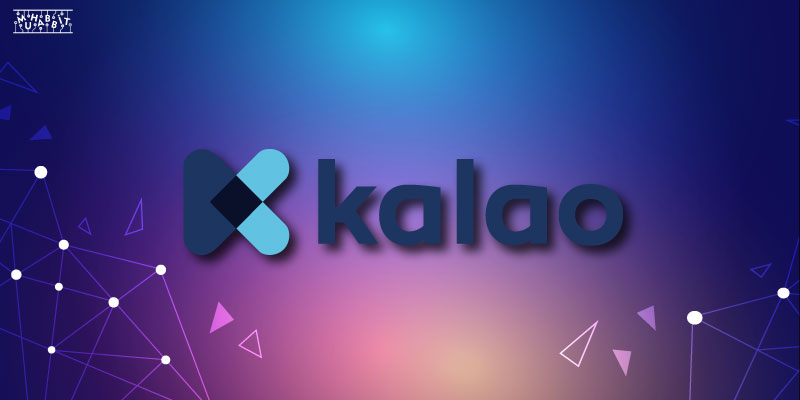 Kalao Muhabbit - Avalaunch'a Gelecek Olan Projeler Açıklandı!