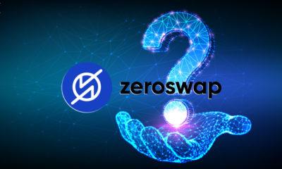 ZeroSwap Nedir?