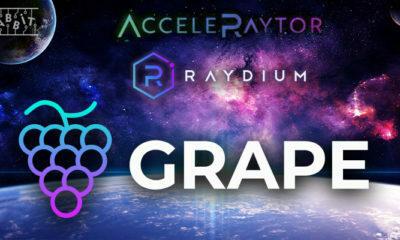 Raydium GRAPE Satışını Gerçekleştirecek! Tüm Detaylar!