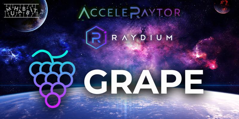 grape raydium