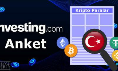 Türkiye'deki Yatırımcılar Bitcoin Hakkında Ne Düşünüyor?