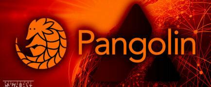 PNG Staking Ödülleri İçin 2 Yeni Opsiyon Aktive Edildi!