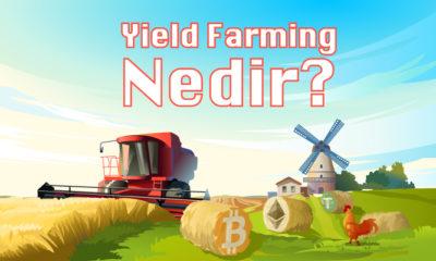 Yield Farming: DeFi'da Pasif Gelir