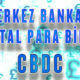 CBDC: Merkez Bankası Dijital Para Birimleri