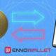 Enno Cash Tanıtımı ve Yaklaşan Enno Birds Programı