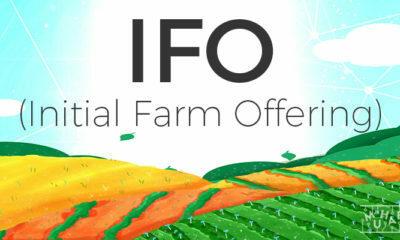 IFO (Initial Farm Offering) Nedir?
