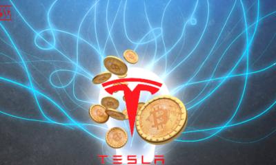 Tesla Muhabbit