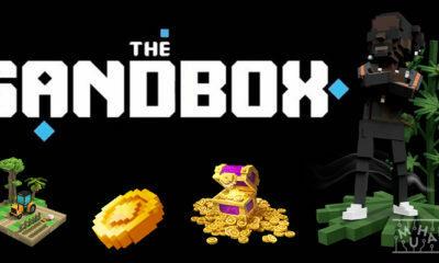 Sandbox Nedir? Özellikleri Nelerdir?