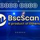 BscScan Nedir? Nasıl Kullanılır?